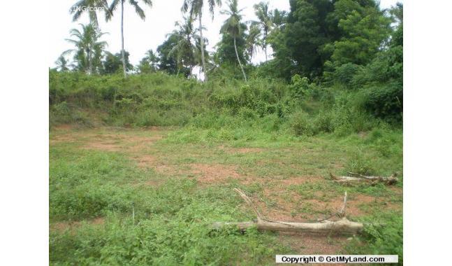 Dunagaha Sri Lanka  city photos gallery : land for sale negombo dunagaha town 100 perch land dunagaha